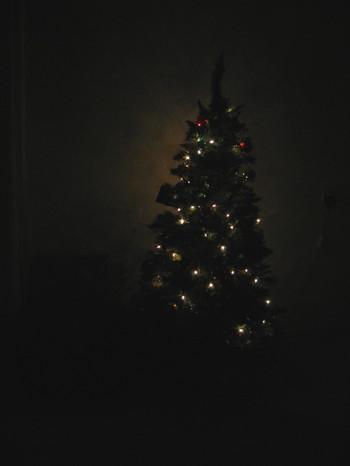 / ... El árbol de navidad... /